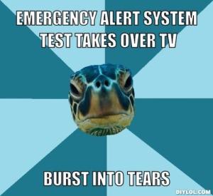 sensory turtle 10