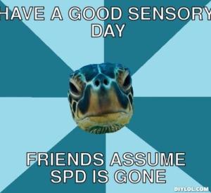 sensory turtle 3