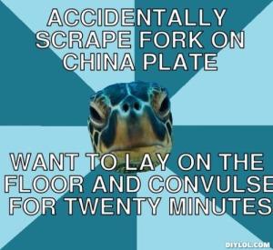 sensory turtle